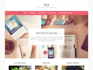 قالب شرکتی Sela